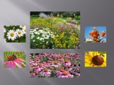 gardencollagegray